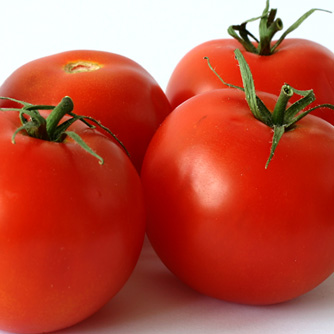 Juicy tomatoes ready for eating