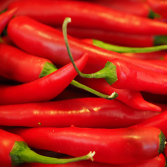 The classic hot red chilli