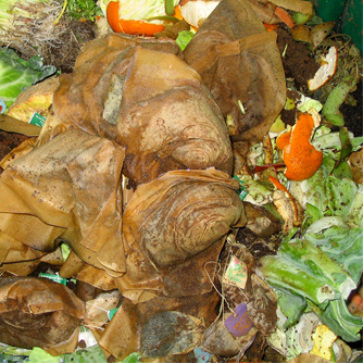 Kitchen scraps are great compost ingredients.